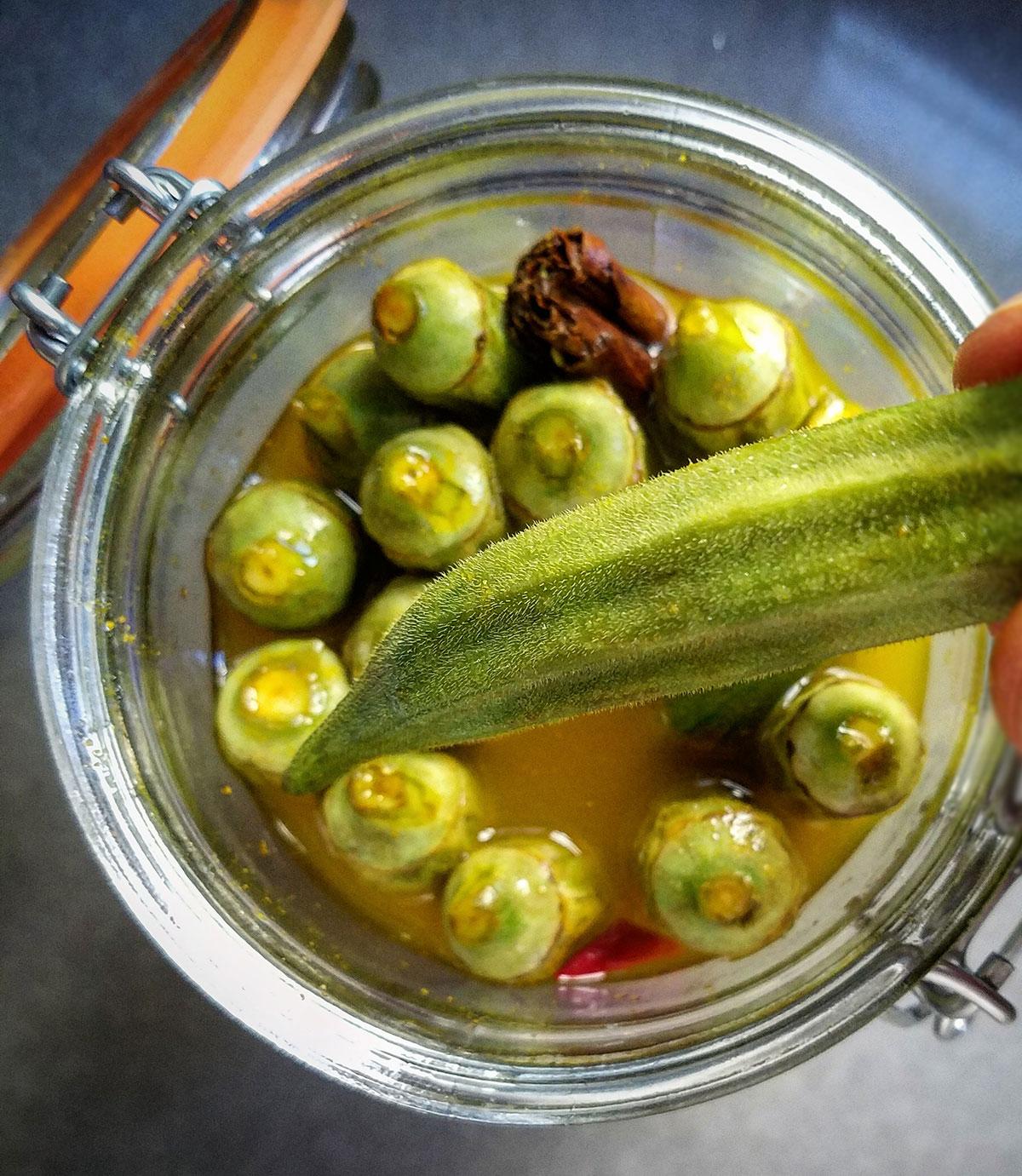 Pickled Okra Recipe